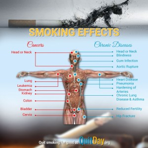 Smoking's Effects on the body, The effects of smoking.