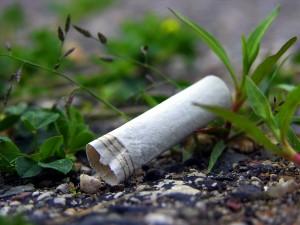 Urban Cigarette Butt