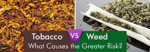 Tobacco Vs. Weed - What Causes the Greater Risk?
