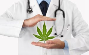 doctor recommends cannabis