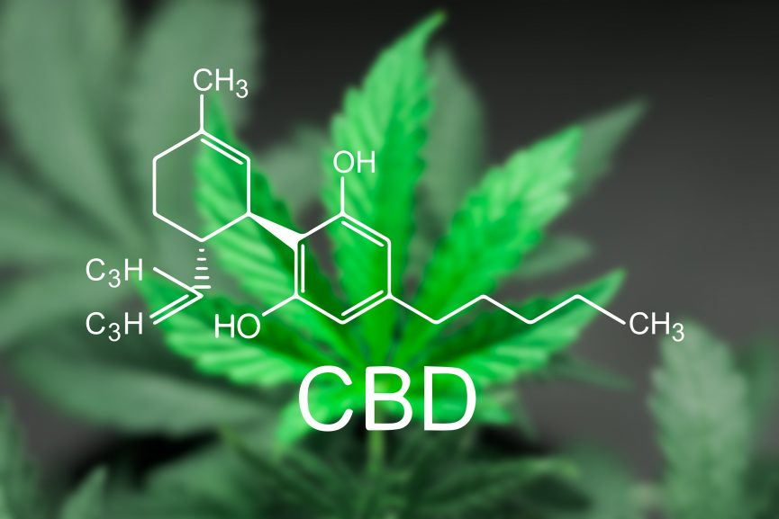 CBD in your system