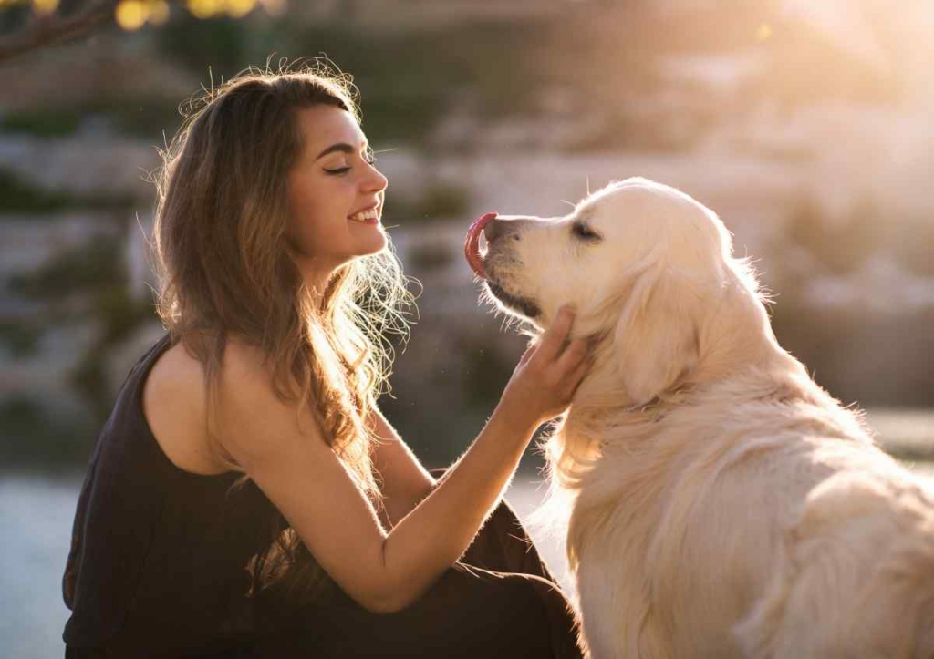 Woman with her dog playing outdoors image
