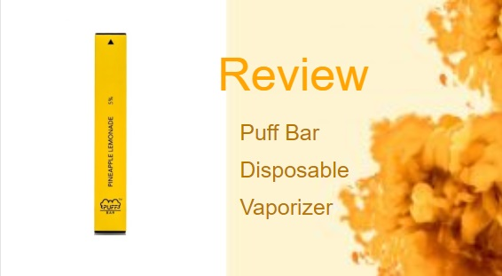 Puff Bar: Disposable Nicotine Salt Vape in 20 Different Flavors