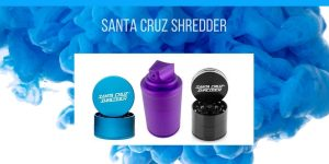 Santa Cruz Shredder feature image