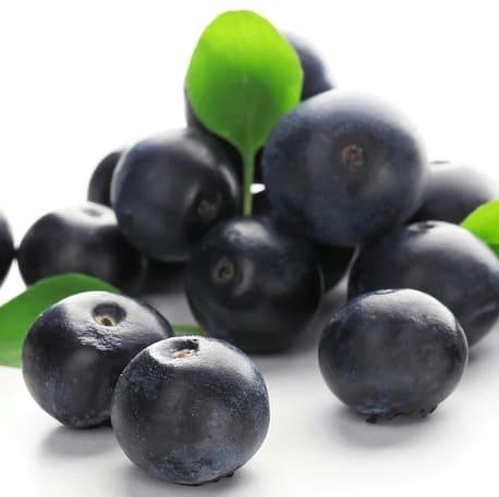 Acai Berry Flavor Concentrate