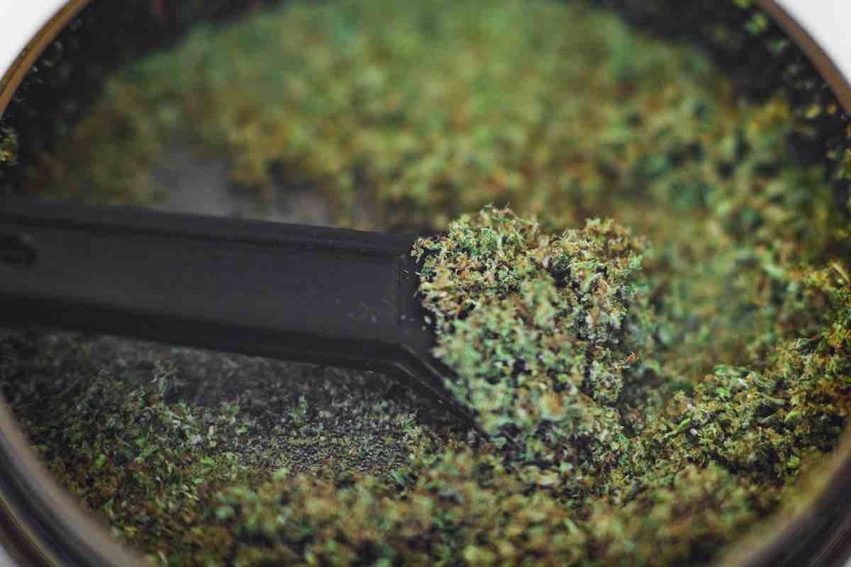 What is Kief? – The Way to Get as High as the Sky